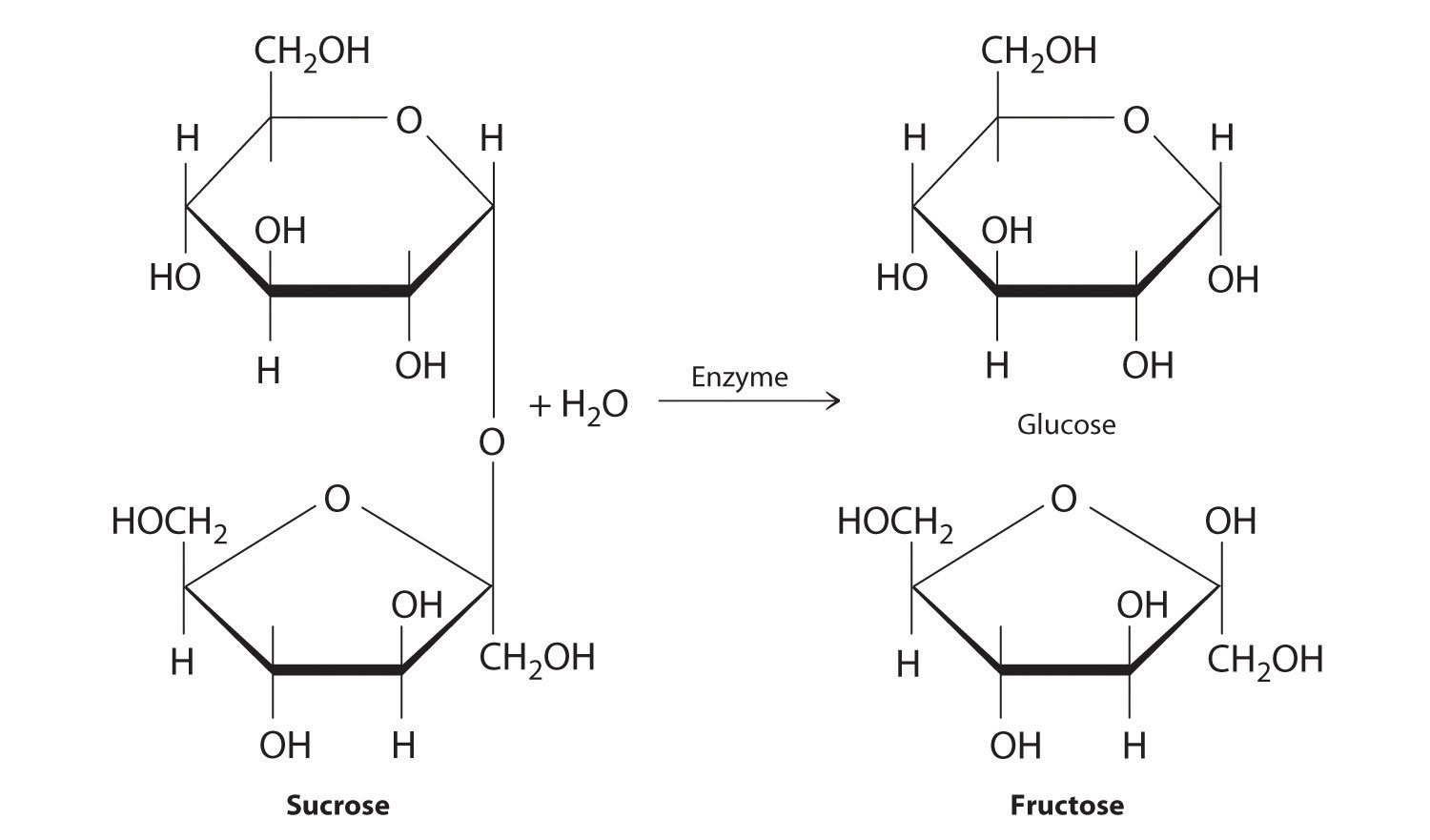 general chemistry ionic reactions Chemistry introduction - basic overview, periodic table,  as well as college general chemistry  neutralization reactions and net ionic.