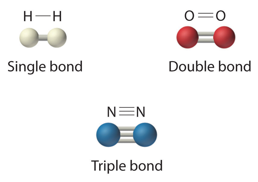 N2 Dot Structure Hydrogen  H 2  has a single