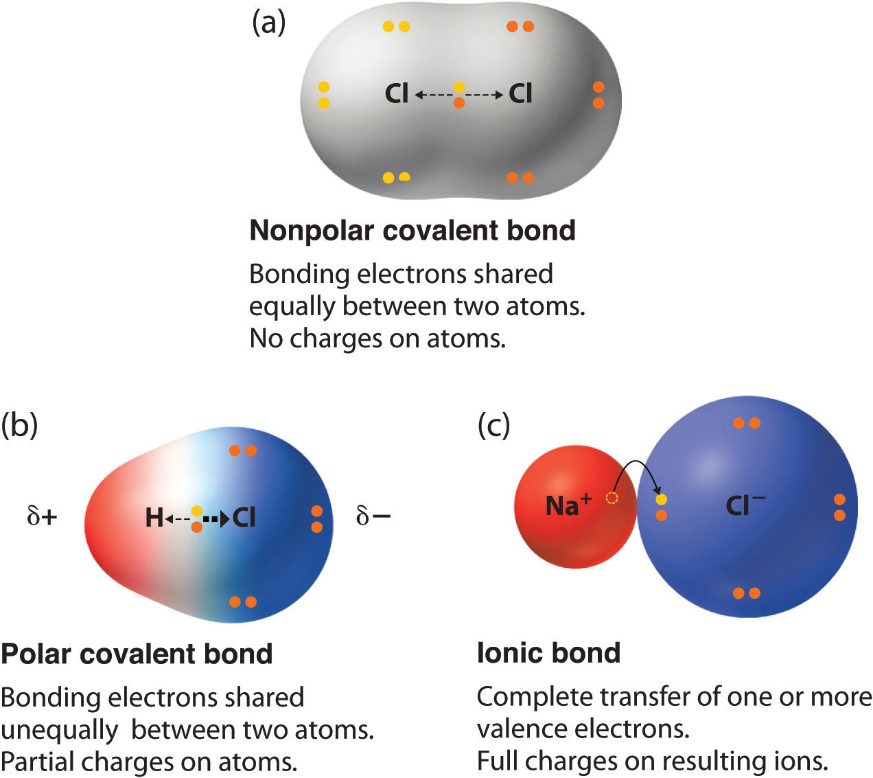 ionic and covalent bonds Learn about covalent bonds and their two types: nonpolar covalent bonds and polar covalent bonds discover how to predict the type of bond that.