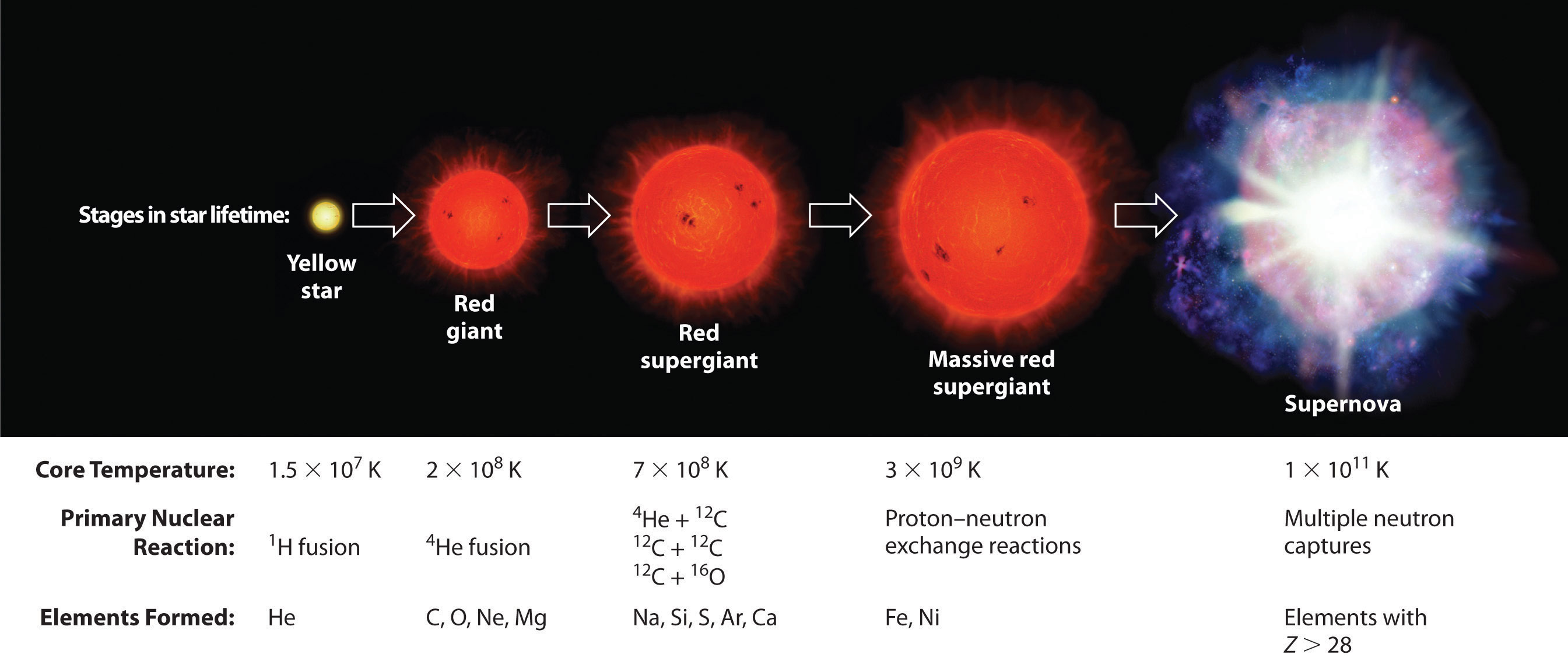 red giant star life cycle - photo #9
