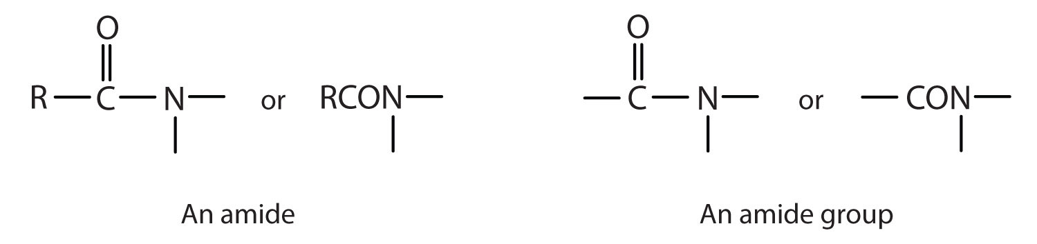 Esters Functional Group These Functional Groups Are