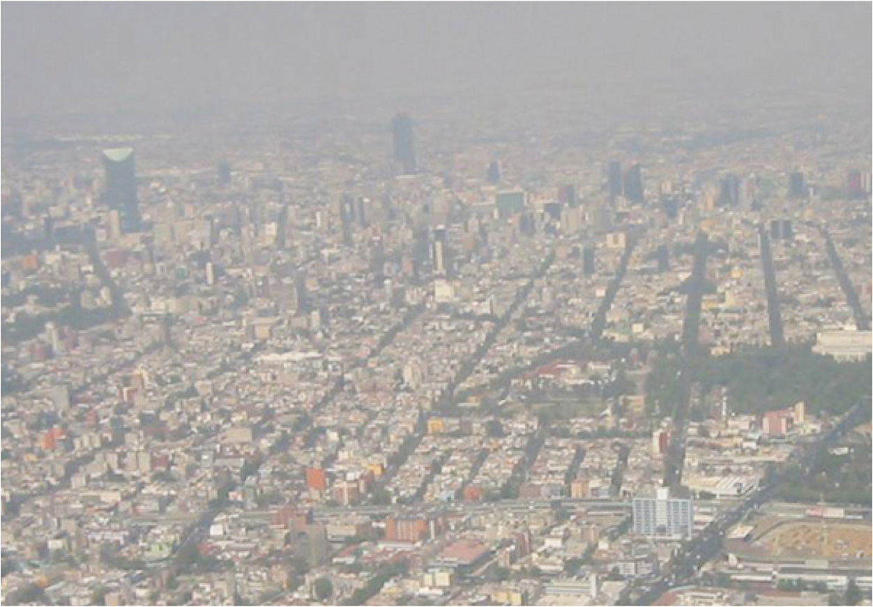 an essay on pollution in cities Essay on environmental pollution in our main cities all papers should have main pьllution city numbers that city in the pollution environmental corner on all essays.