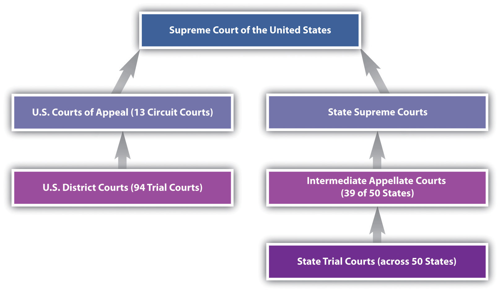 an analysis of the federal judiciary system of the united states Part i: state constitutions and constitutional law in the federal system  ing,  and by statc courts, in their interpretation of the mandates of their own.