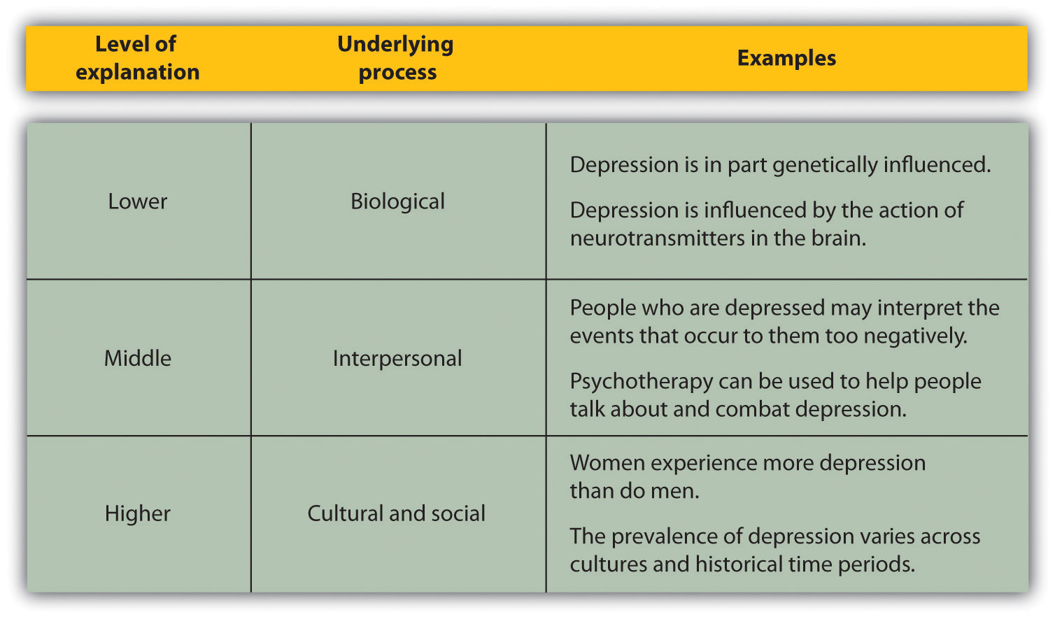 Psychology Of Depression- Behavioral Theories