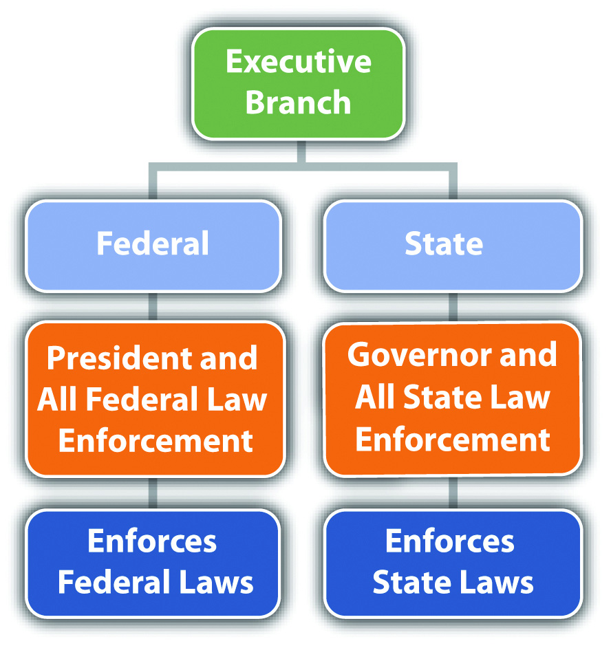 Three Branches Of State Government