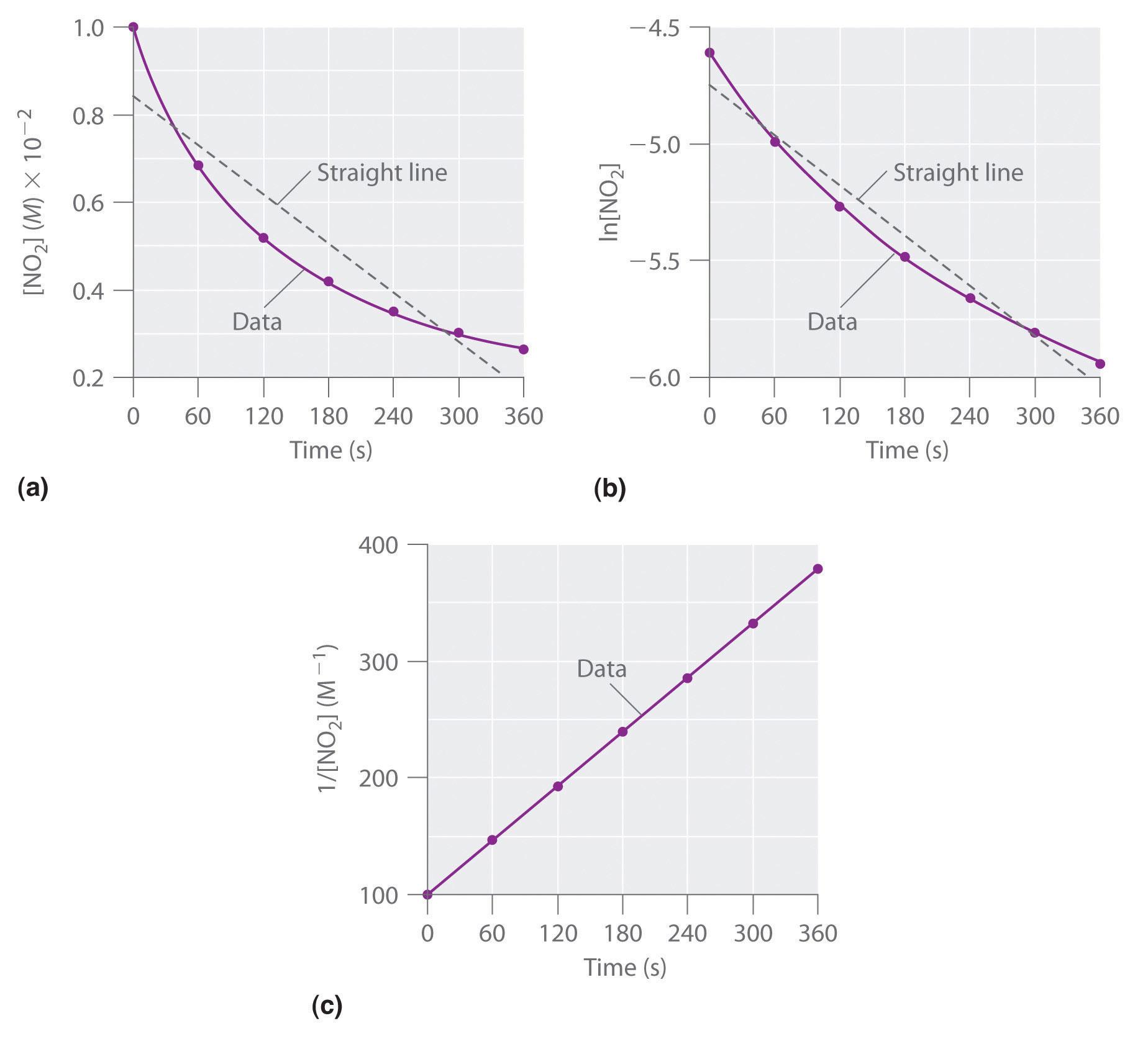 worksheet Rate Law Worksheet general chemistry principles patterns and applications 1 0 flatworld