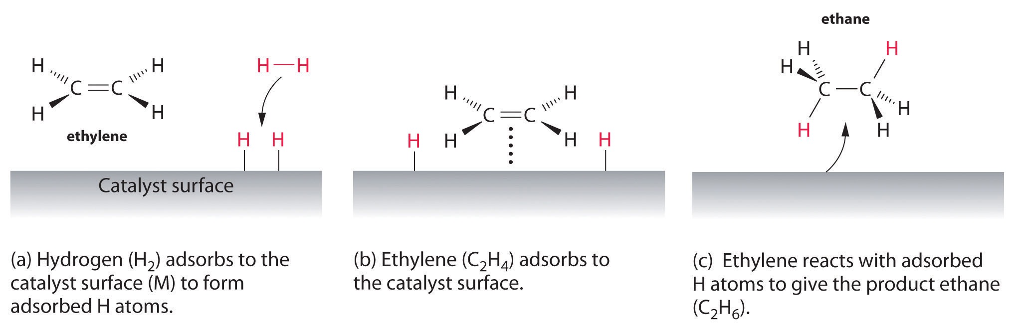 General chemistry principles patterns and applications v10 when a molecule of hydrogen adsorbs to the catalyst surface the hh bond breaks and new mh bonds are formed the individual h atoms are more reactive pooptronica Choice Image
