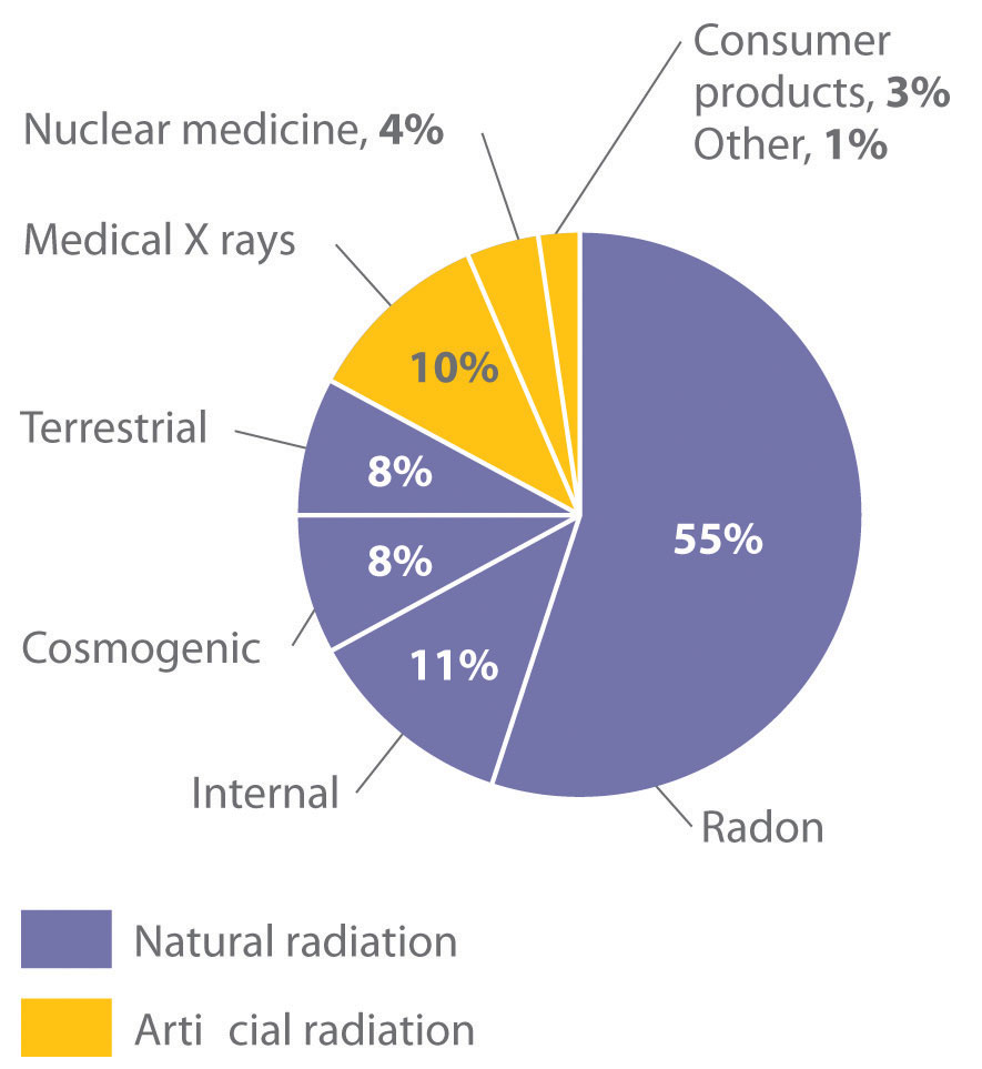 General chemistry principles patterns and applications 10 natural sources of radiation buycottarizona
