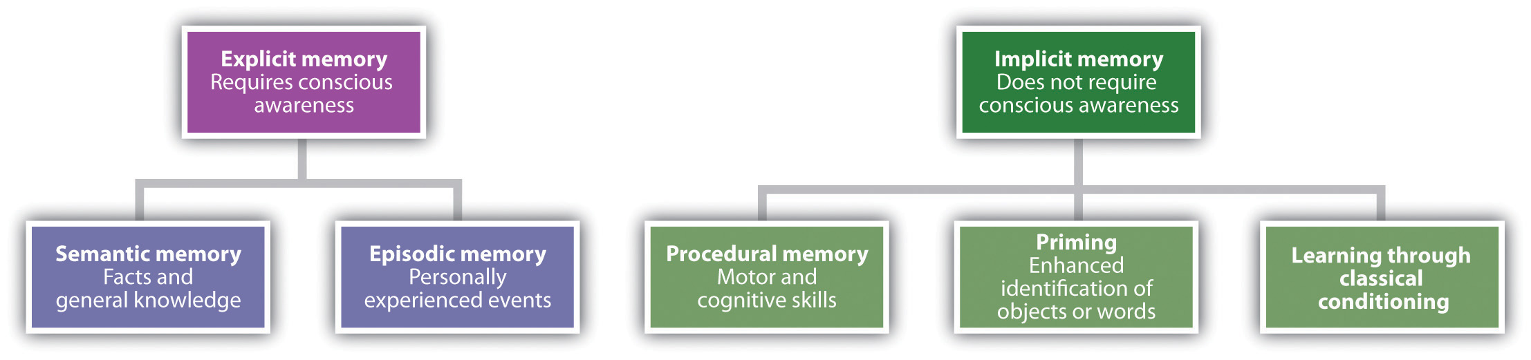 the definition and types of memories Would you like to know all about the 2 memory types what are the characteristics and operations of short-term and long-term memory what is working memory.