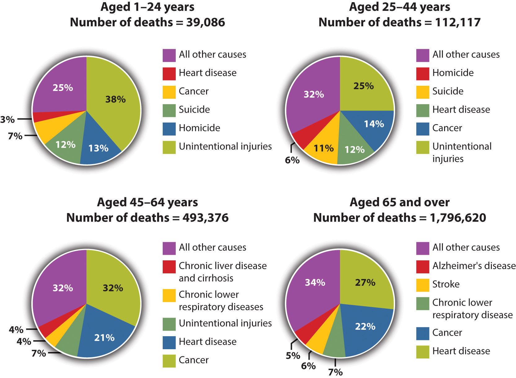 Causes Of Obesity Pie Chart | www.pixshark.com - Images ...
